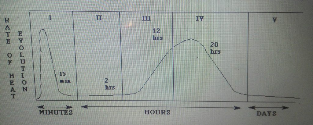 evolution of heat vs Time Curve in concrete