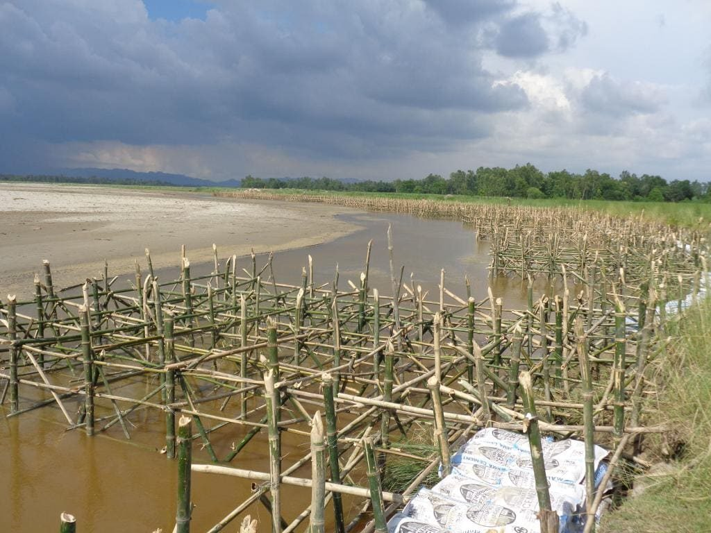 Bamboo percopining- Solutions to flooding