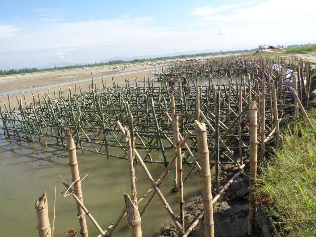 Bio-Engineering with Bamboo protection of river Bank