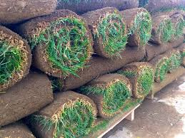 Material for Sod